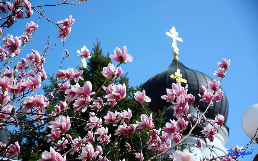 Самая праздничная неделя в году началась у православных.
